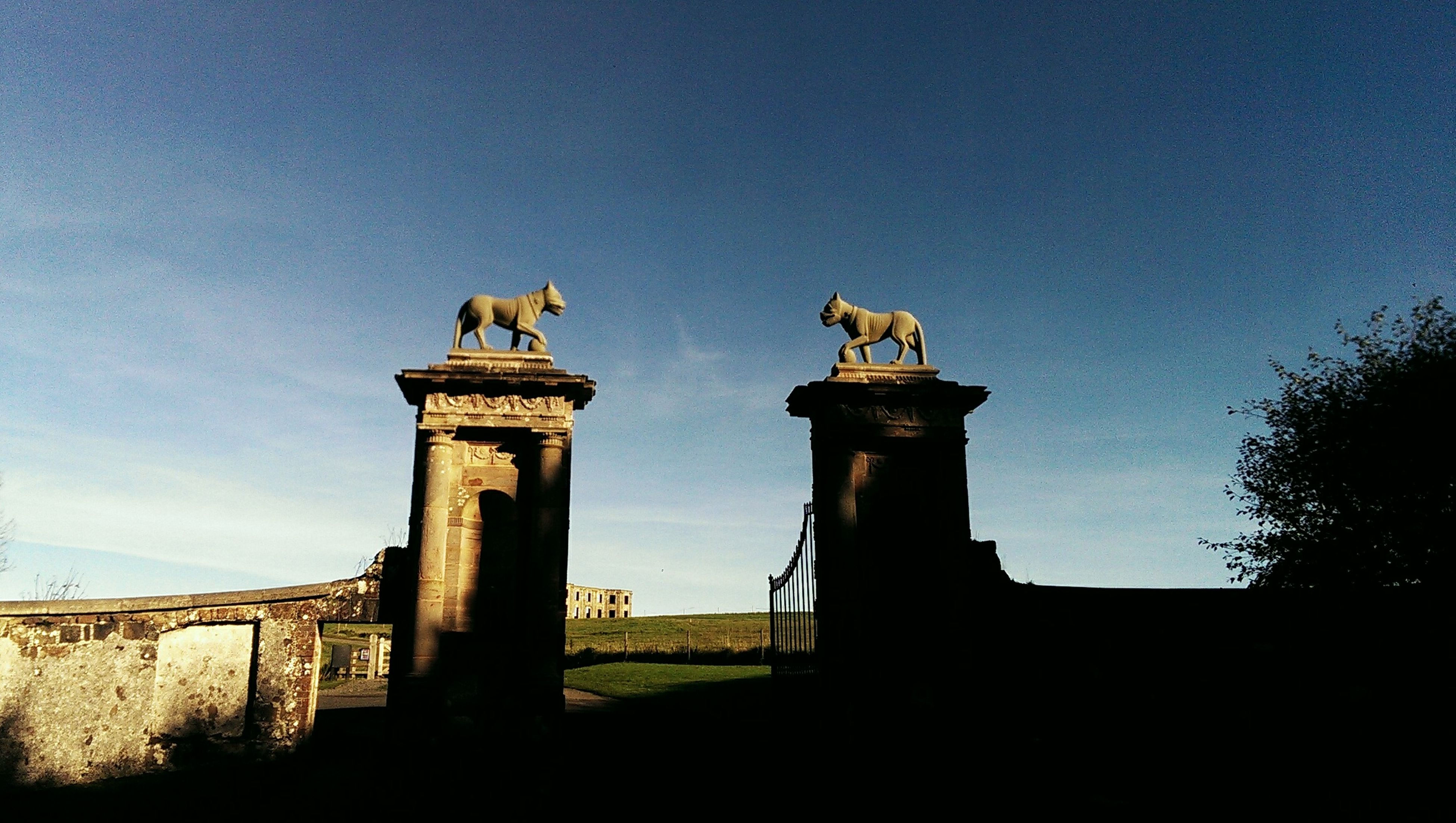 low angle view, built structure, architecture, blue, clear sky, sky, copy space, animal themes, building exterior, history, statue, one animal, outdoors, sculpture, no people, day, bird, wildlife, architectural column, sunlight