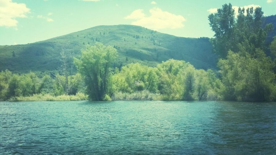 What Does Peace Look Like To You? Pine View Lake Utah