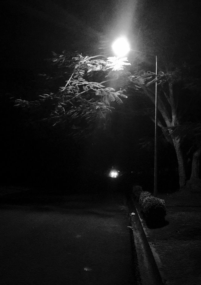 Streetlight InTheDark Monochrome