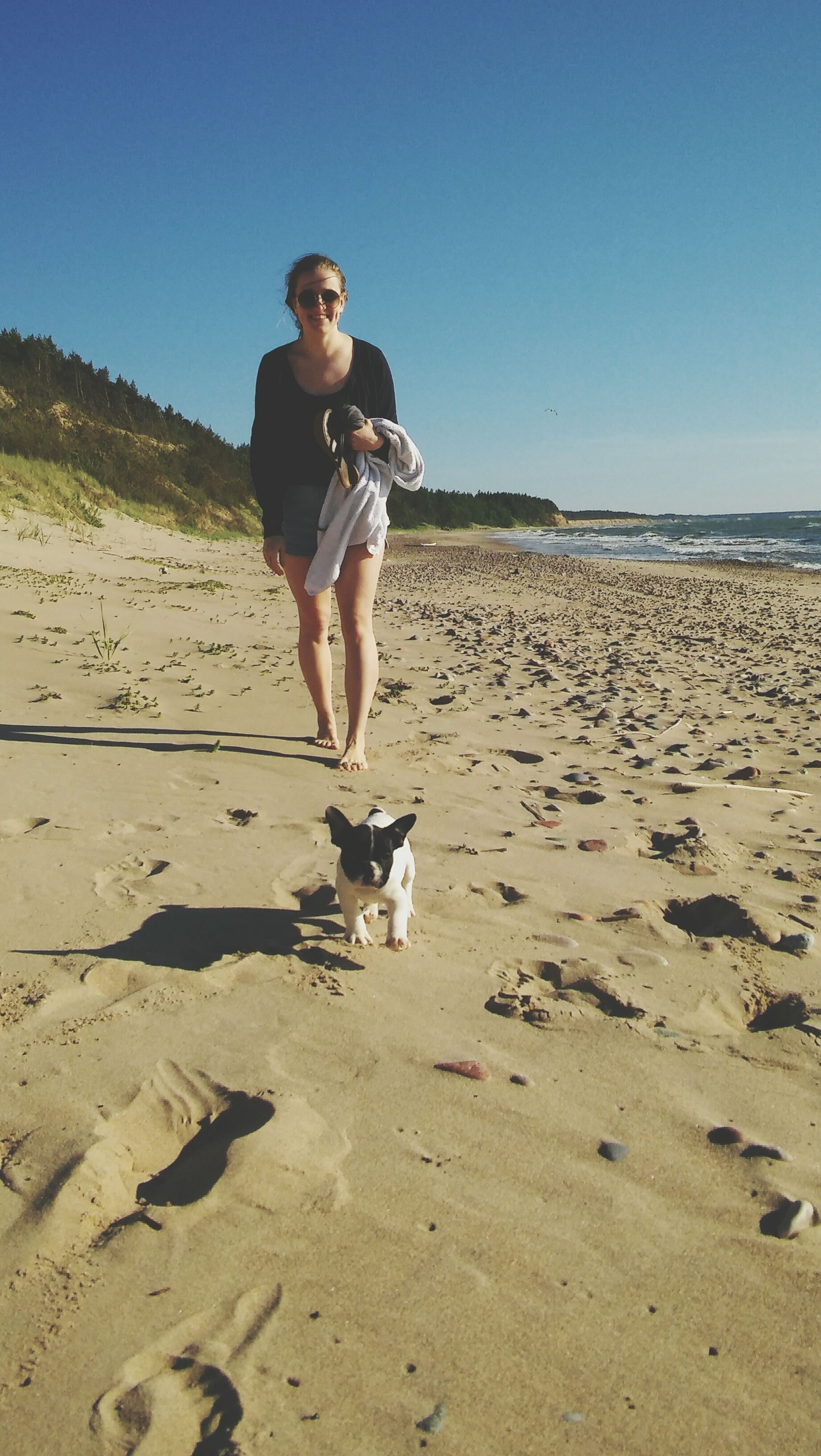 beach, sand, full length, pets, young adult, real people, young women, one animal, domestic animals, leisure activity, clear sky, dog, one person, animal themes, lifestyles, outdoors, walking, casual clothing, front view, nature, mammal, sky, sunlight, day, shadow, beauty in nature, energetic, people