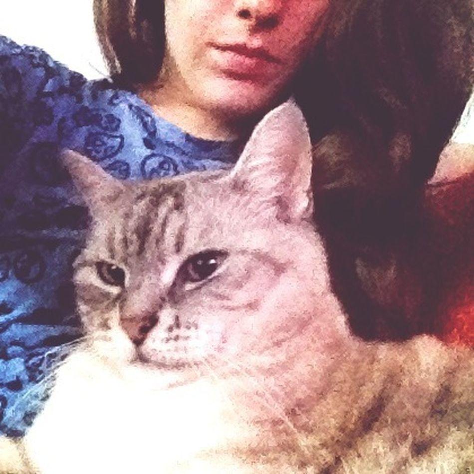 ❤️ Meow