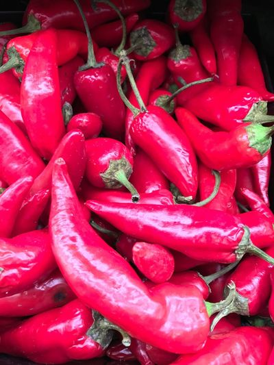 Red Food And Drink Vegetable Red Chili Pepper Abq Shot On IPhone7 IPhoneography