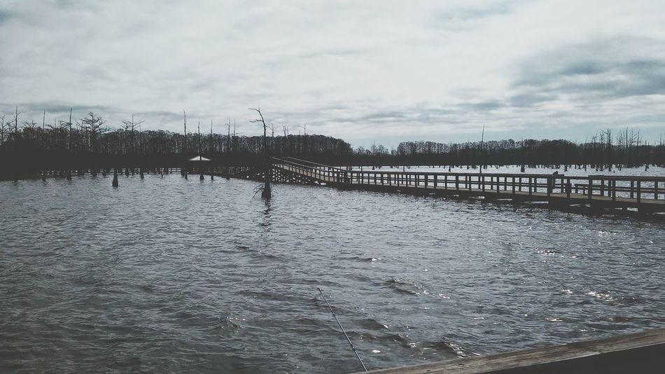 Black Bayou Lake View Louisiana Swamp Louisiana Pier Fishing Fresh On EyeEm