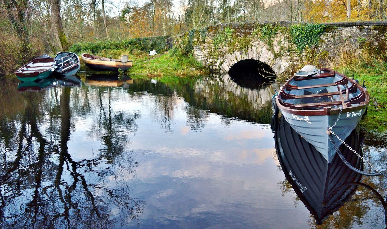 Beautiful stock photos of ireland, reflection, tree, water, day