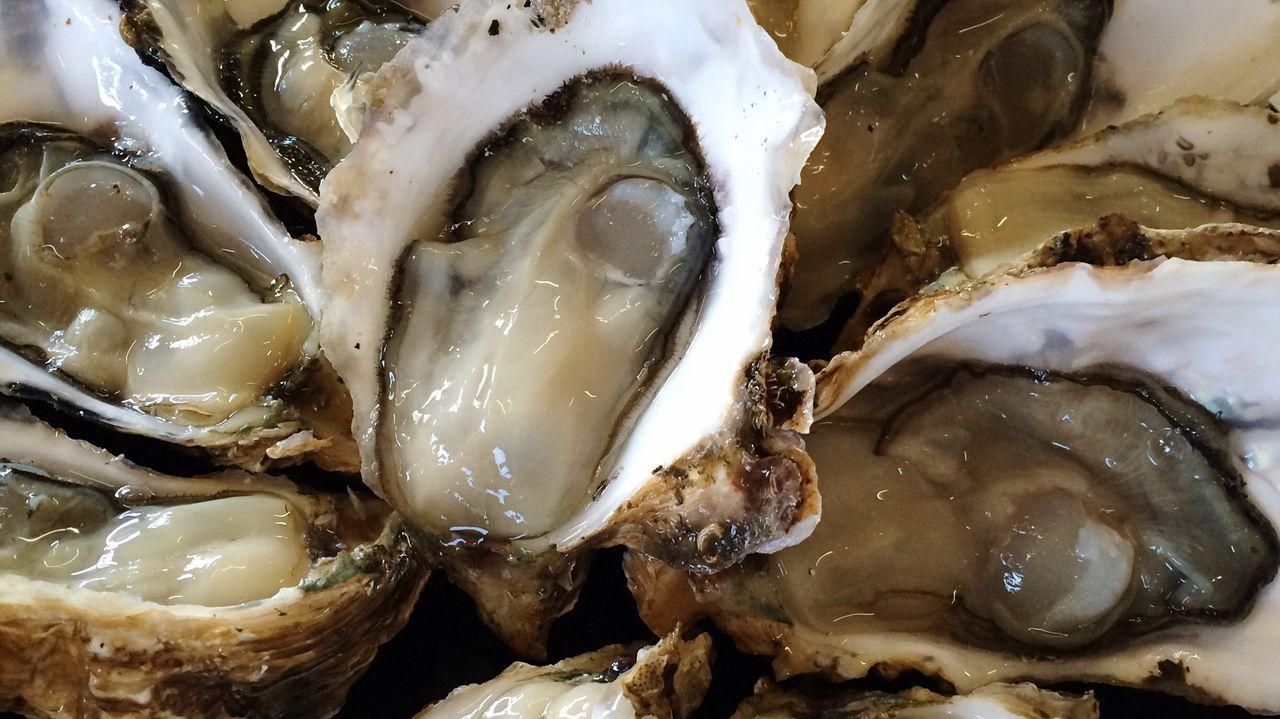生牡蠣 浦村 鳥羽 三重 オイスター 牡蠣 Oyster  Mie-ken Mie Toba Uramura Raw Oysters Japanese Food Food Photography Foodphotography Food SEAFOOD🐡 Seafoods
