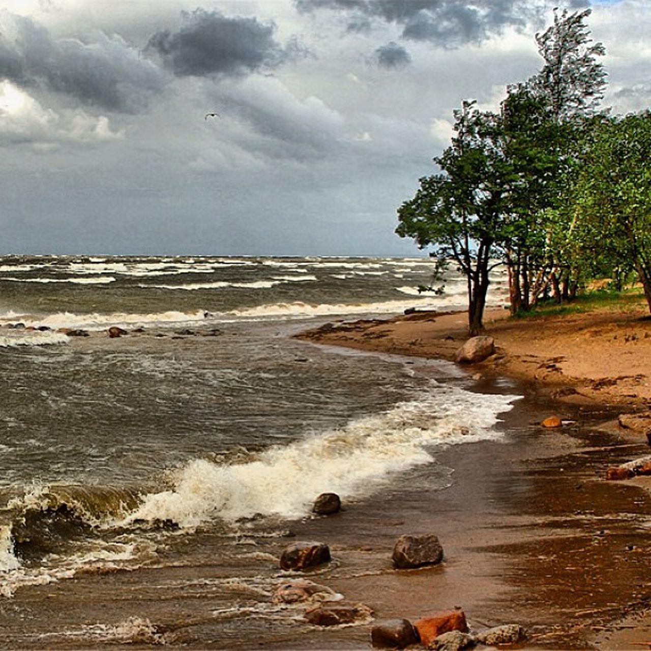 Russia Sunktpetersburg Storm Sea september wave wind