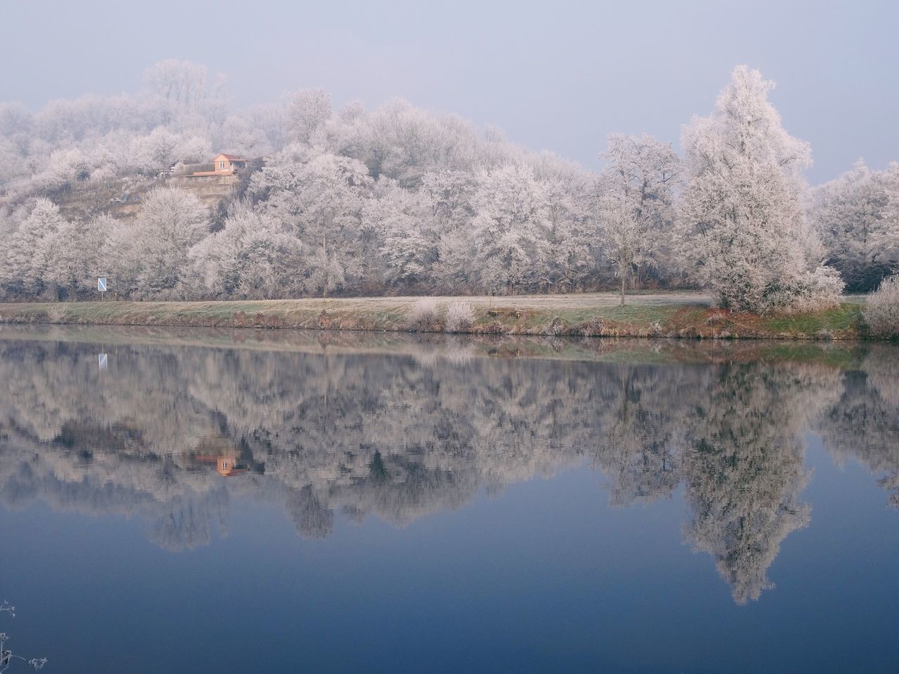 Reflection Water Nature Tree Frost Tranquility Snow Waterfront New Year Symmetry Lake Idyllic Outdoors Standing Water No People Day Sky Water Reflections Mirror Lake Forest Trees Winter White Frost Neckar River
