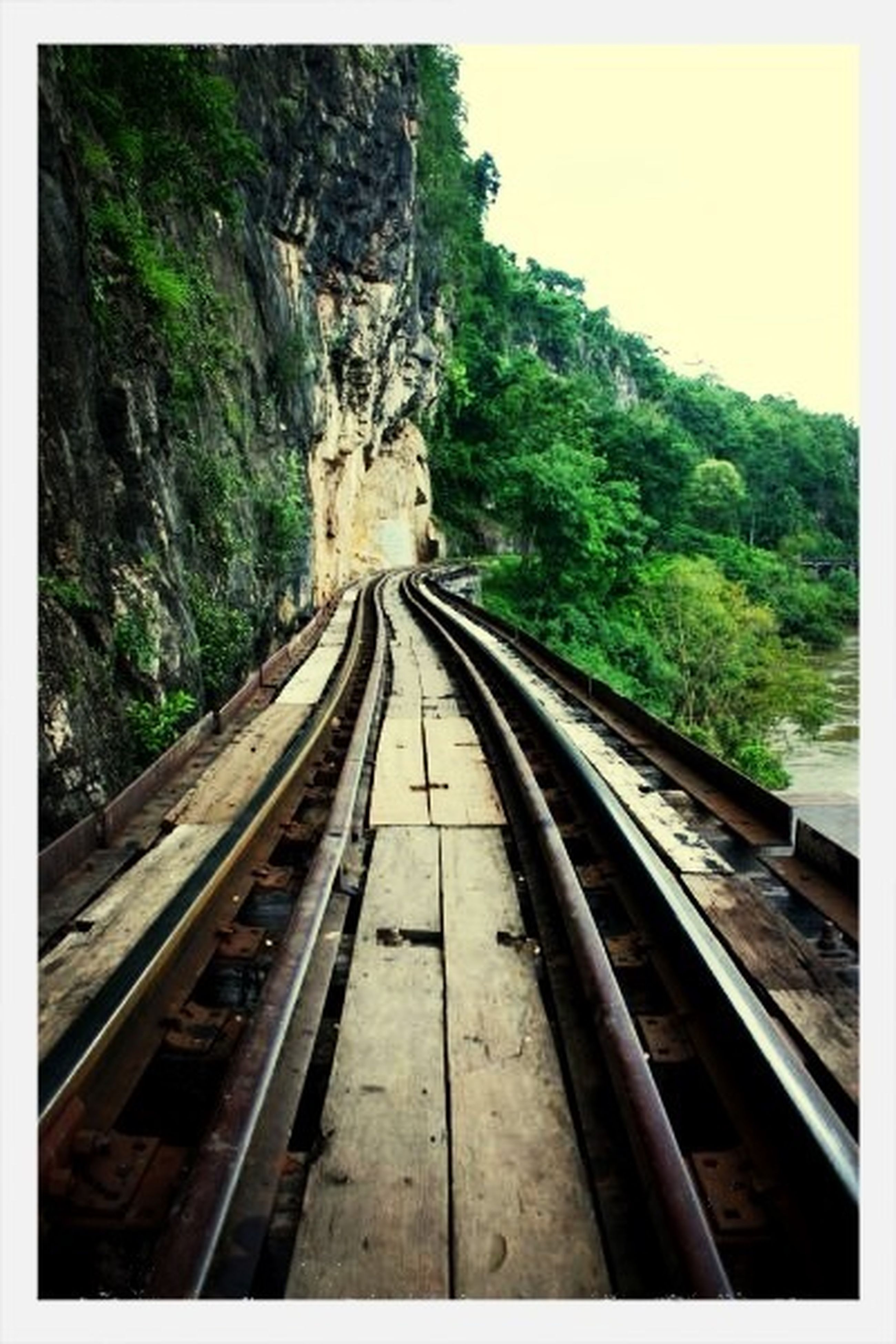 railroad track, rail transportation, transportation, tree, public transportation, the way forward, diminishing perspective, railway track, vanishing point, connection, travel, transfer print, day, auto post production filter, high angle view, no people, outdoors, train, sky, nature