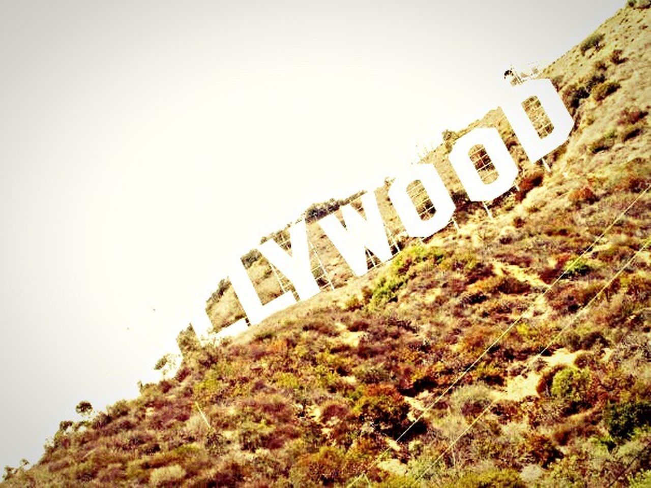 Hollywood California Losangeles Lalaland Hollywood Sign Hollywood Hills USA