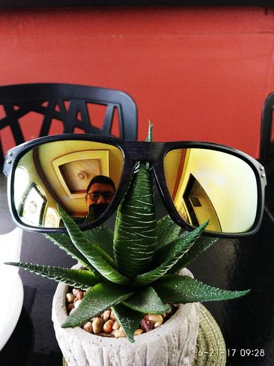 Lounging at Big Boy's Bistro inside the compound of Beyond Limits.... Close-up No People Indoors  Xiaomi Xiaomiphotography Havinfunwithmysnapper Mi5mysnapper Photos Photo SungalssesphTranquility Mobilephotography Photooftheday Sunglasses👓 Photography EyeEmNewHere