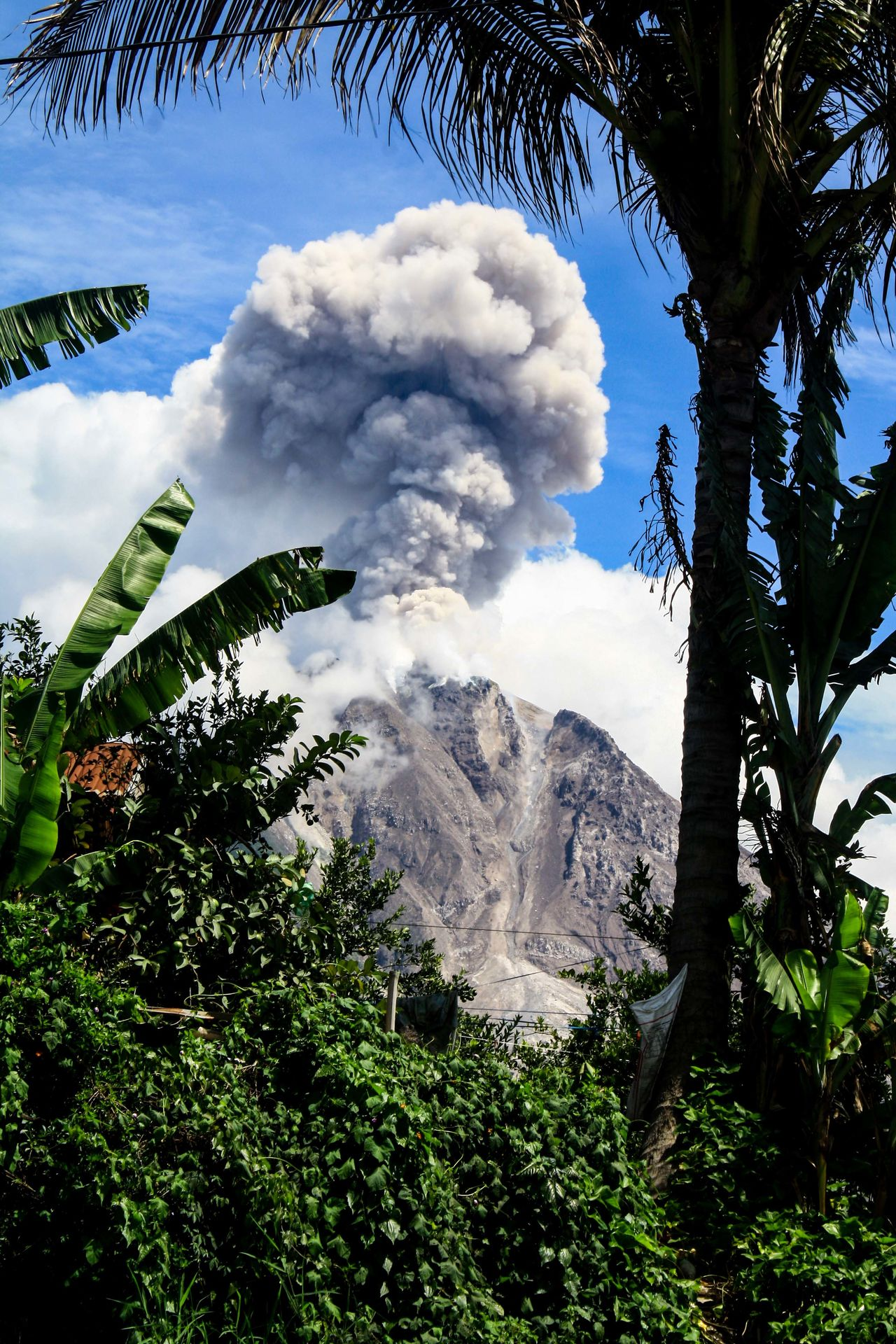mount sinabung again issued a heal clouds with the status of the level IV Alert and resident were expected to keep the red zone, on 3rd September 2016 Enjoying Life EyeEm Best Shots EyeEm Gallery EyeEm Nature Lover Eyeemphoto Jurnalist Photojurnalism Photojurnalist Sinabung Sinabung Sumatera Utara Sinabungeruption The Photojournalist - 2017 EyeEm Awards