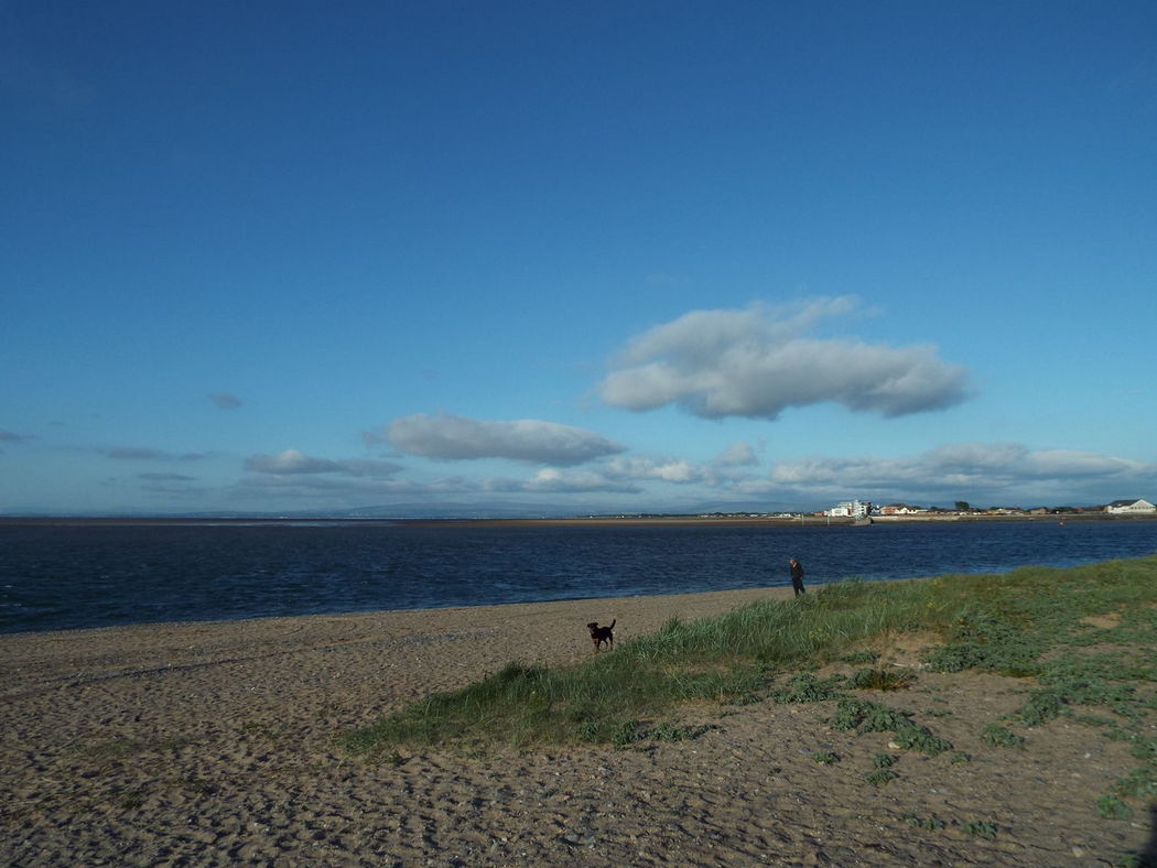 Someone walking their dog along Fleetwood beach Blue Sky And Clouds Blue Sea One Person One Animal Dog Fleetwood Beach Sand Marram Grass Sea People Of The Oceans On The Way