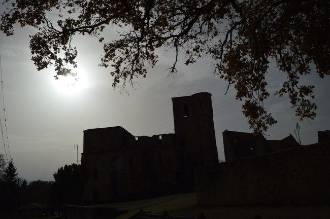Church Cloud - Sky Destruction Memories Silhouette Sun Sunbeam Tree War