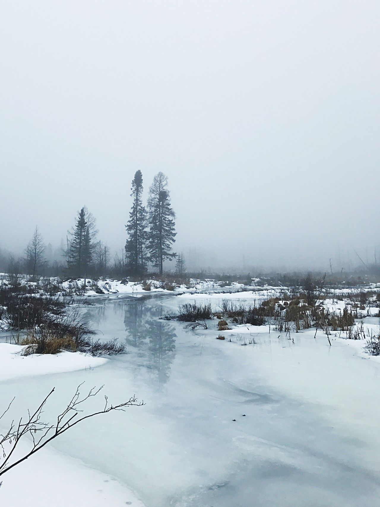 Foggy creek Nature Beauty In Nature Winter Landscape Outdoors Iphoneonly Countryside Fog Reflection Water