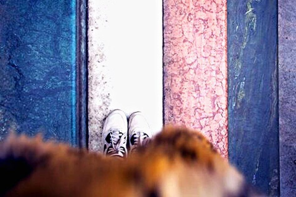 Marble Stairs Marble Stairs Nike Air Max Faux Fur Coat Leopard Print Feetselfie Trainers Edinburgh
