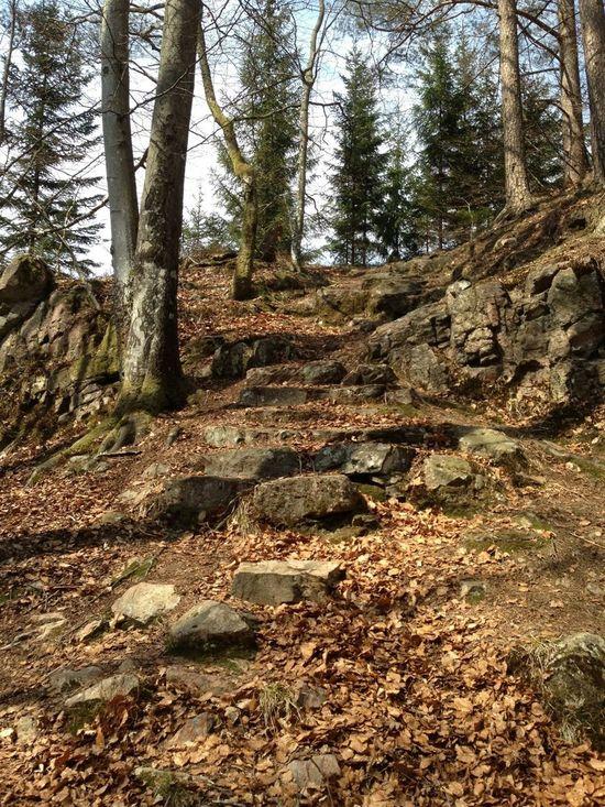 EyeEm Nature Lover Walking In The Footsteps Of History