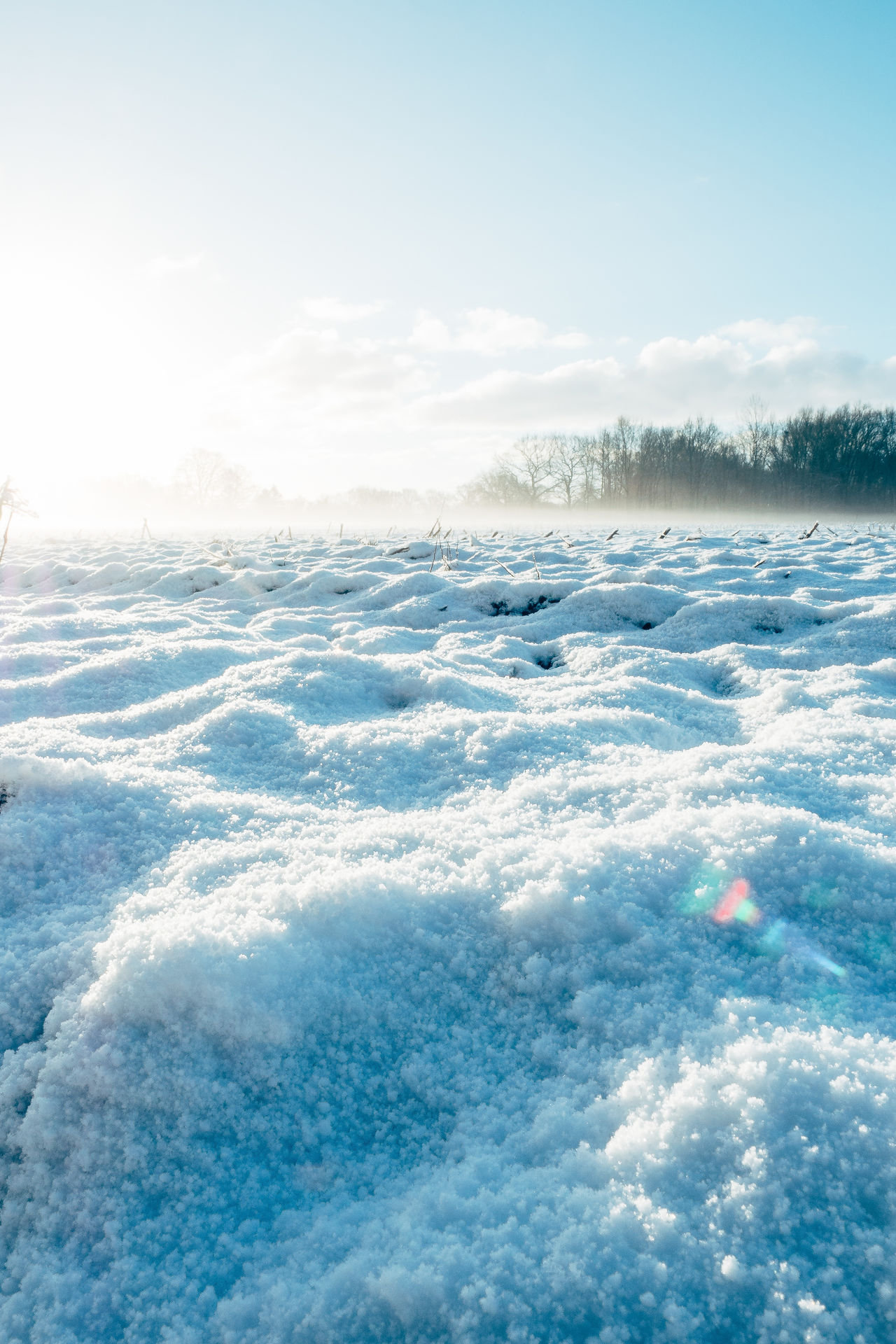 North Germany | Winter Backgrounds Beauty Beauty In Nature Blue Cloud - Sky Cold Temperature Day Freshness Frozen Ice Landscape Nature No People Outdoors Polar Climate Scenics Sea Sky Snow Water Winter