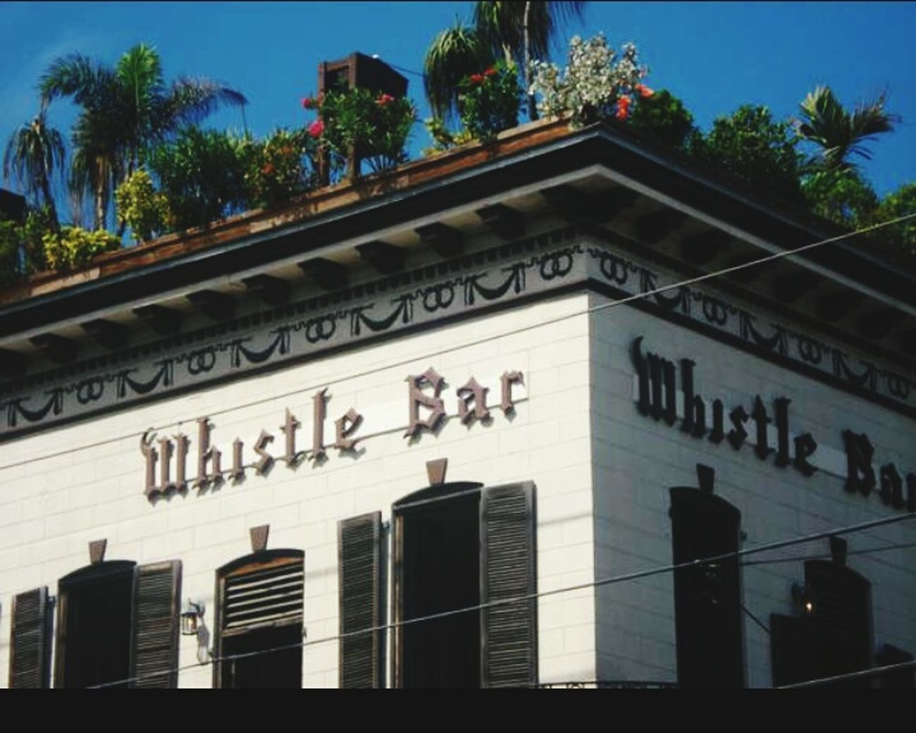 Whistle Bar Whistle Bar Garden On Roof Clothing Optional Bar Key West Florida Outdoor Photography Sign Love It Here