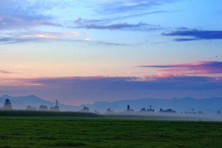 Color Palette Exceptional Photographs This Week On Eyeem Misty Landscape Landscapes With WhiteWall Landscape_photography Freilassing Landscape Walking Around Misty Morning Home Is Where The Art Is Nature On Your Doorstep Bavarian Landscape Bavaria Germany