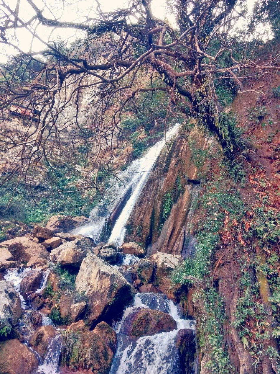 Tree Nature Beauty In Nature No People Scenics Water Outdoors Day Motion Branch Waterfall Sky Mussoorie Diaries Wildlife & Nature Mountain View Mountain Range EyeEmNewHere