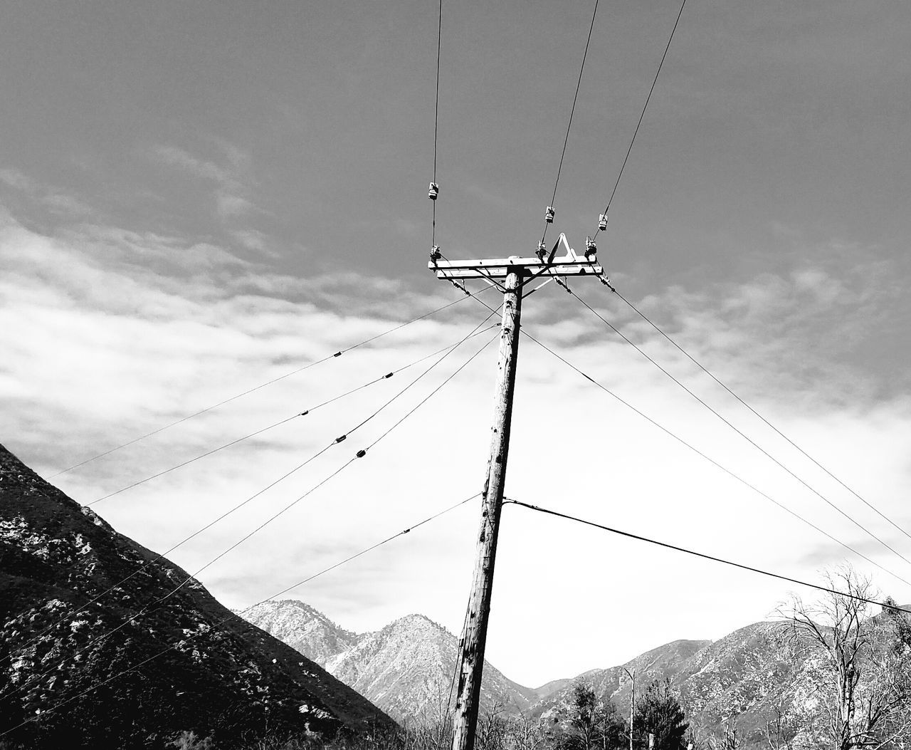 Black And White Connection Technology Outdoors Low Angle View Cable No People Day Cloud - Sky Tree Sky Nature Power Line  Power Pole Pattern, Texture, Shape And Form Copy Space Check This Out EyeEm Best Shots Beauty In Nature Fine Art Photography Mountains In Background Leisure Activity Vitality Tranquility Low Angle View Flying High