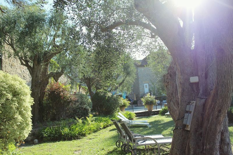 Secret Garden Cotedazur Mougins Le Manoir De L'Étang Relaxing Nature France Green House Maison Pool