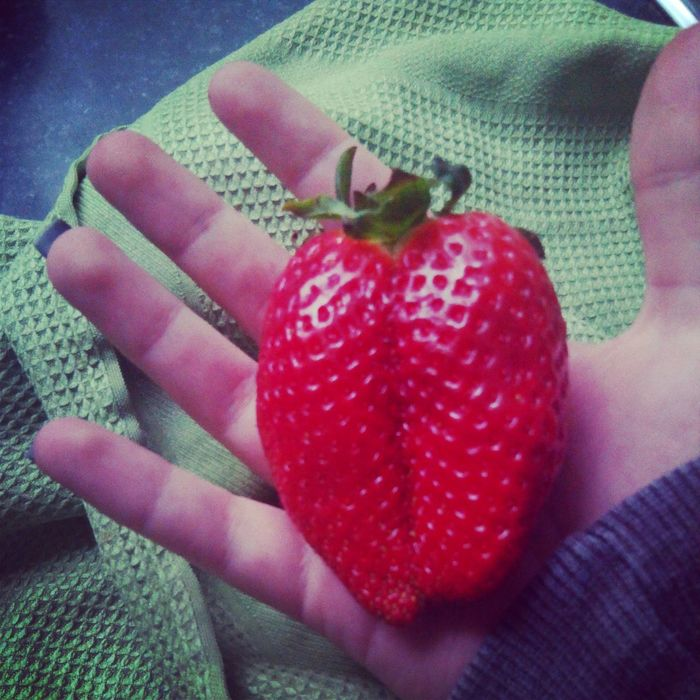 Eating an enormous strawberry Strawberry Fruit Food That's Me
