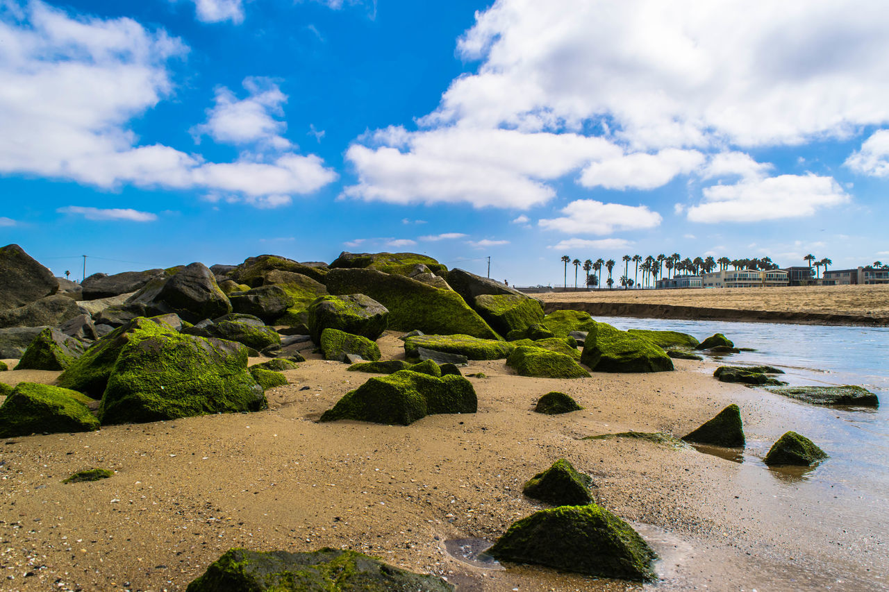 Beach Beach Rocks Beachphotography Blue Sky Low Tide Mossy Rock Mossy Stone Newport Beach Pacific Ocean River Where The River Meets The Beach