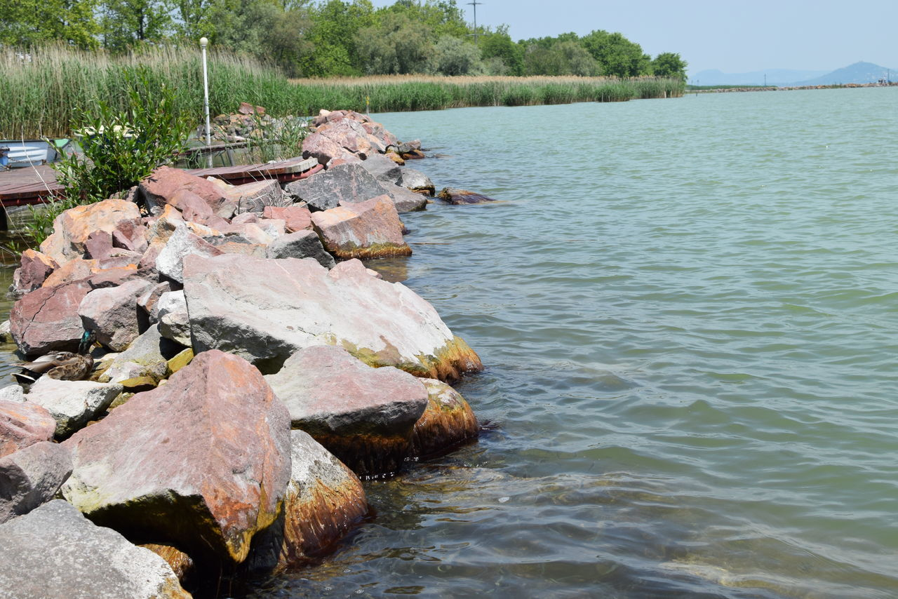 Balaton Balaton - Hungary Beauty In Nature Breakwater Bulwark Calm Lakeshore Nature Outdoors Reeds Rock Rock - Object Rock Formation Tranquil Scene Tranquility Tree Water