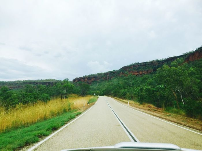 Australia Northern Territory The Way Forward Transportation Road Tree Landscape Nature Wet Season Grass Green