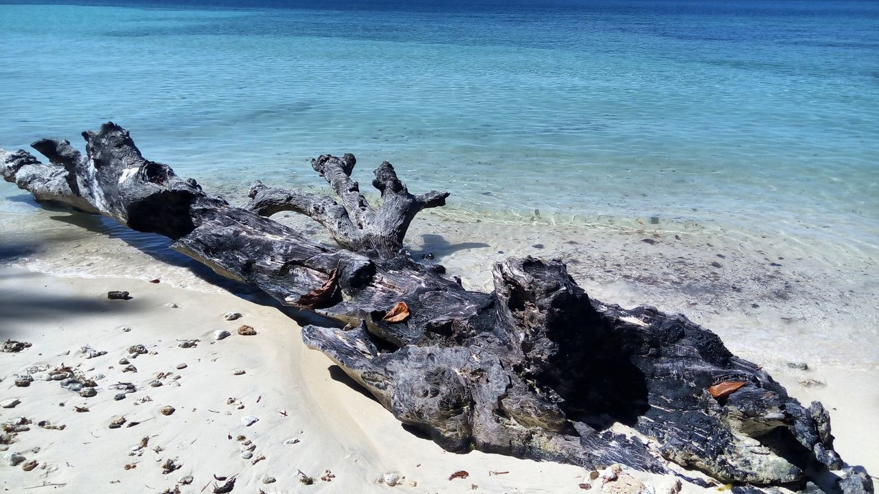 sea, rock - object, nature, water, beach, beauty in nature, day, no people, sand, outdoors, blue, scenics, horizon over water, tree, dead tree, sky, close-up
