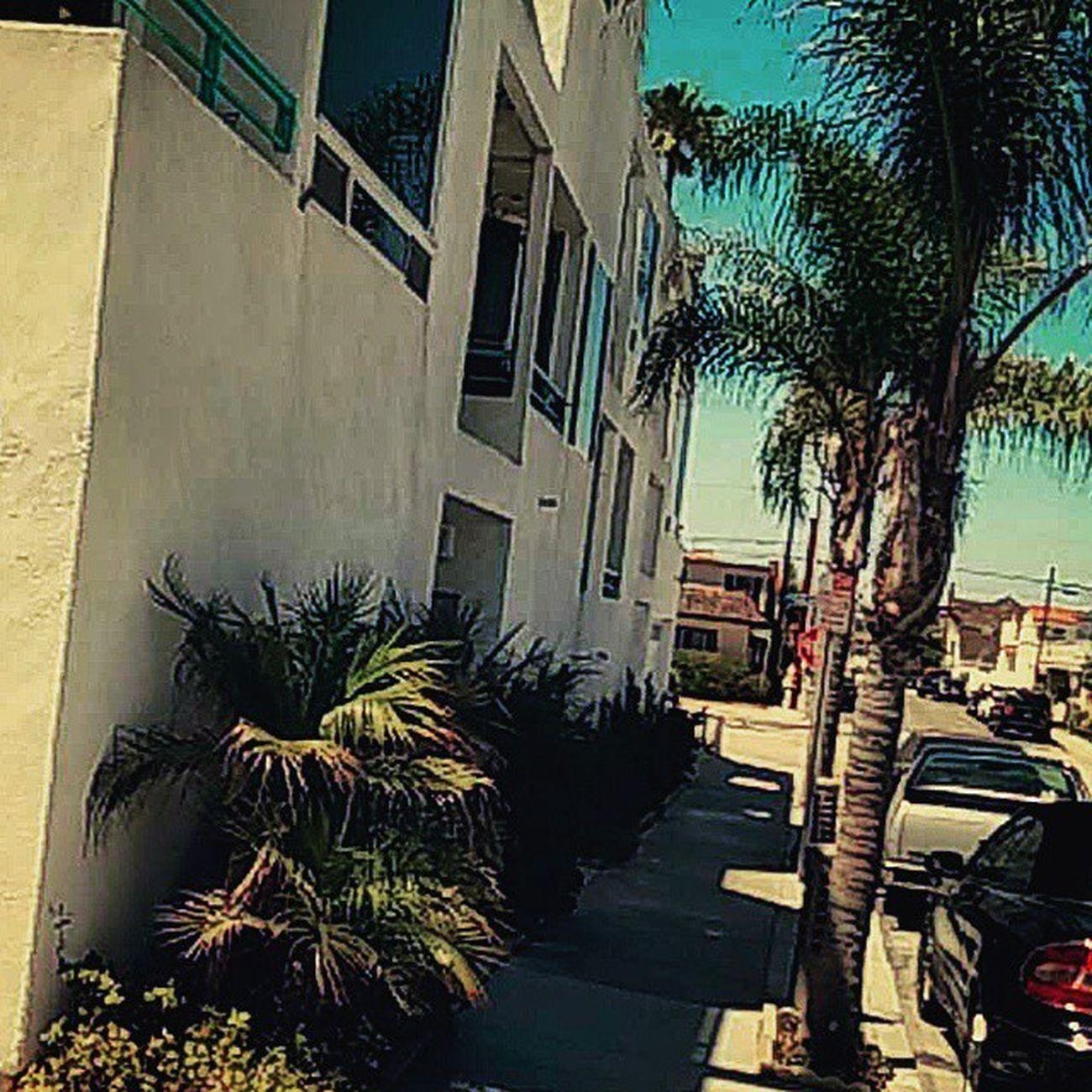 Lacasablanca 12thstreetbeach Cali