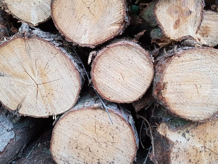 《 Woodpile Forestry Industry Outdoors Full Frame Stack Log Timber Backgrounds Nature 》