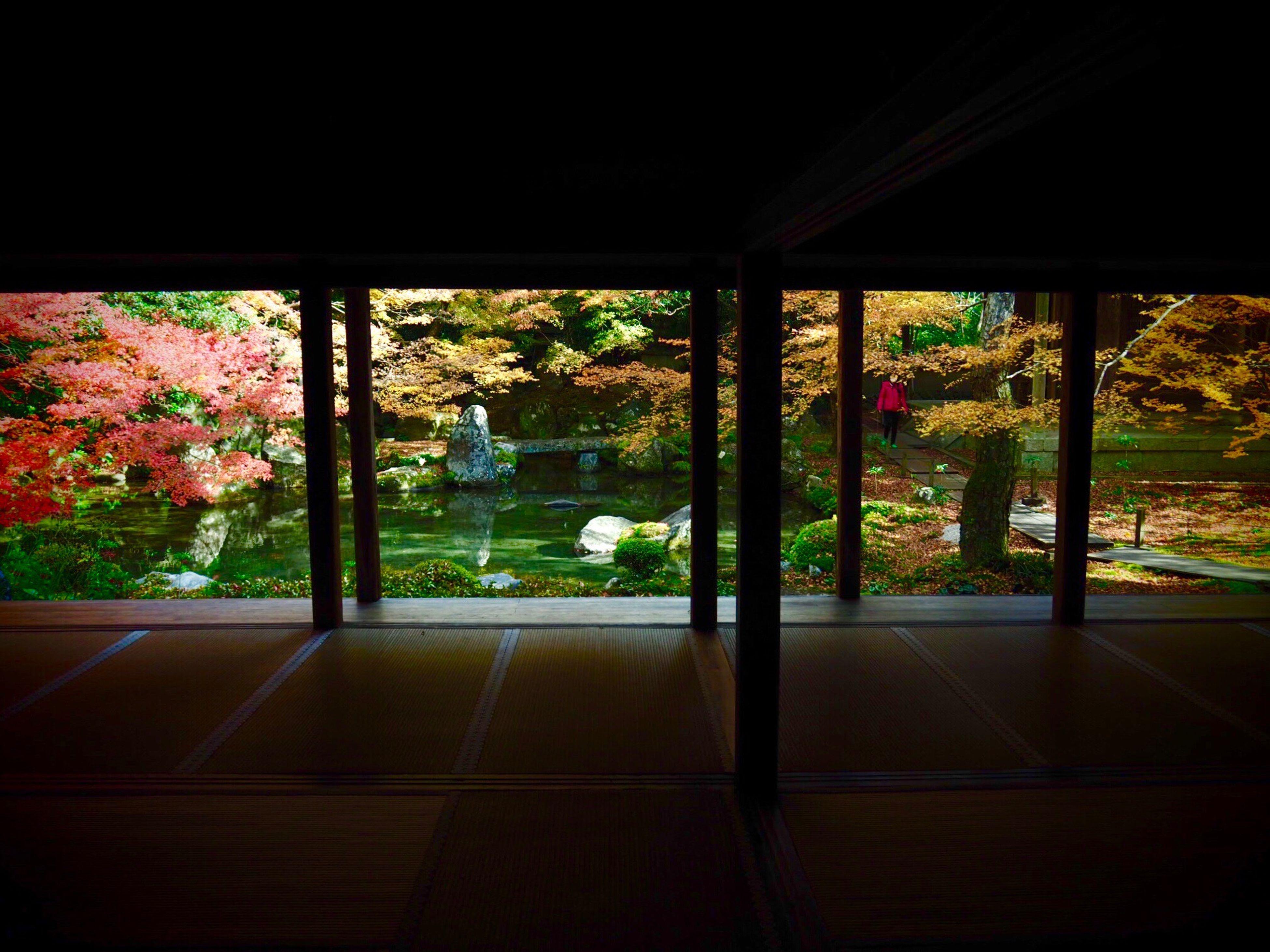 Kyoto Japan ASIA Yase Rengeji Temple Garden Courtyard  Architecture Beauty In Nature Nature Tree Autumn Olympus PEN-F