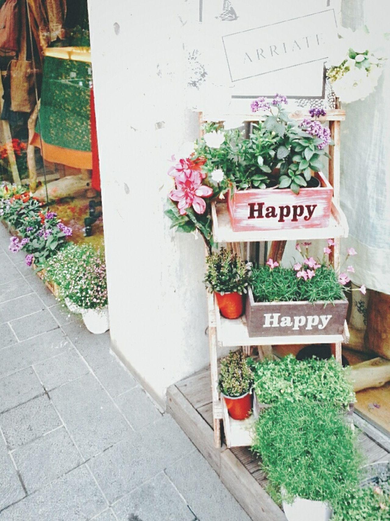 인사동 골목 꽃집