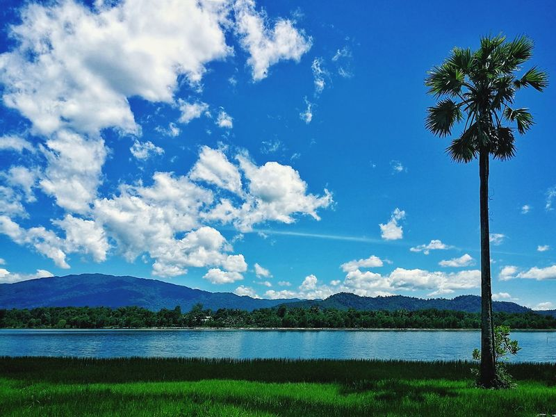 Lovely nature Green Thailand Travel Holidays Vacations Cloud - Sky Water Mountain Sky Lake Tree Outdoors Landscape Nature Tranquility Blue Day Beauty In Nature Phone Photography P10 Scenics Tranquil Scene Idyllic No People Mountain Range Palm Tree Grass Travel Destinations