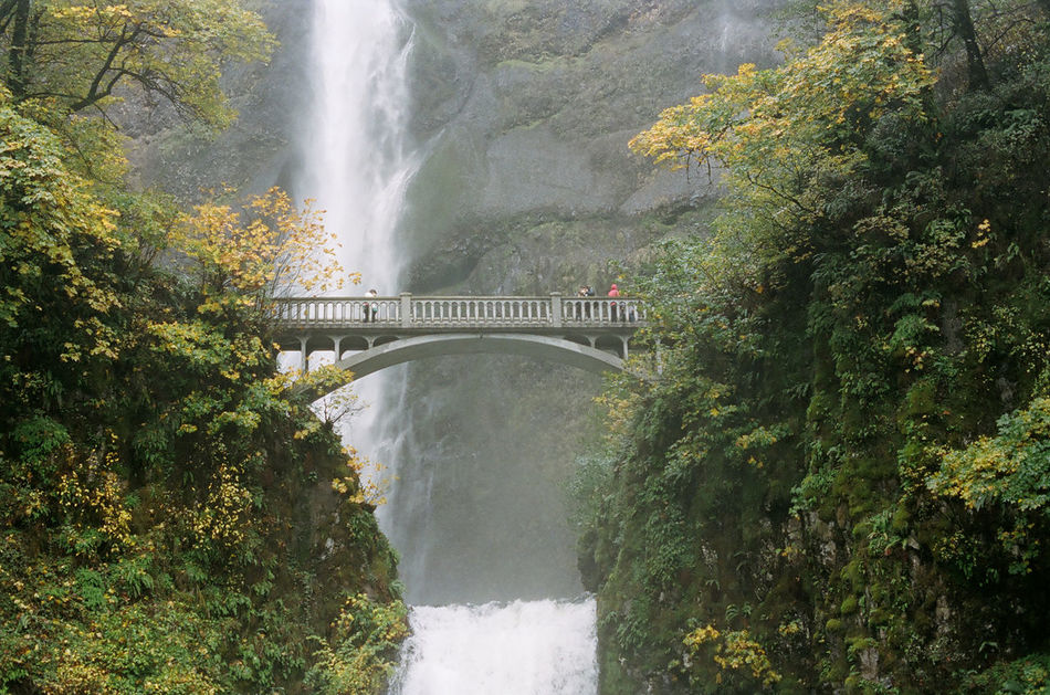 35mm Film Architecture Autumn Beauty In Nature Bridge Bridge - Man Made Structure Day Fall Forest Hiking Mountain Mountain Range Multnomah Falls  Nature Nautical Vessel No People Orange Trees Outdoors Scenics Travel Destinations Tree Water Water Reflections Waterfall