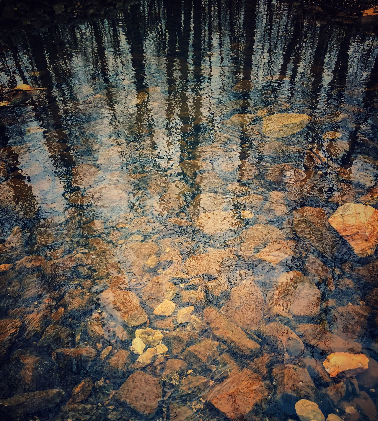 Trees Pointing in the Water Backgrounds Beauty In Nature Brown Contrast Dark And Light Day Full Frame Hiking Nature Nature Nature Photography No People Orange Outdoor Photography Outdoors Reflection Rocks Rocks And Water Scenics Tranquil Scene Tranquility Trees Under Water Water Water Reflections