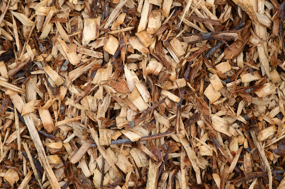 Abundance Backgrounds Close-up Full Frame Gardening Mulch Wood - Material Wood Chips