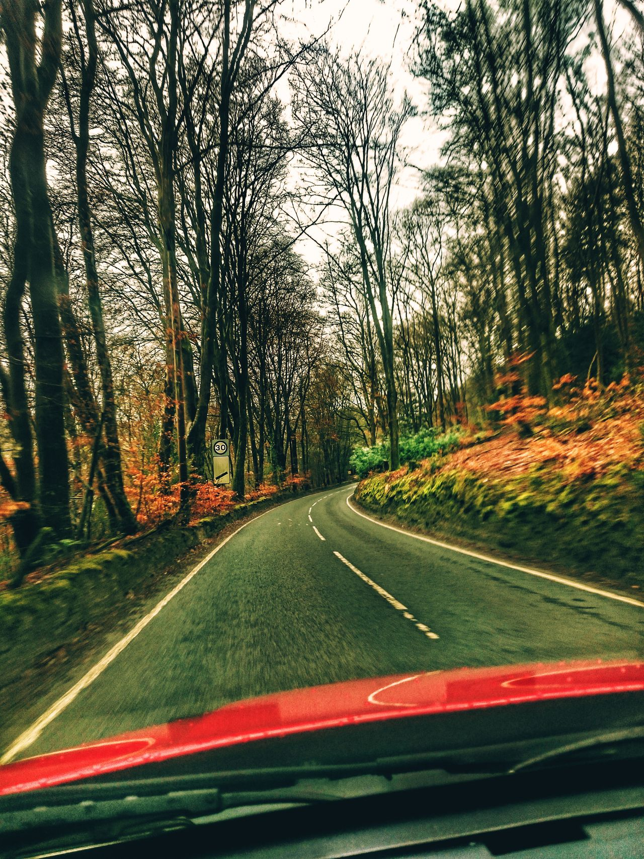 Tree Transportation Road Day Nature Outdoors Countryroadstakemehome Welsh Roads Wales Driving Home Country Lane Tree_collection  Downhill To The Right Bend Hidden Gems  For Friends That Connect