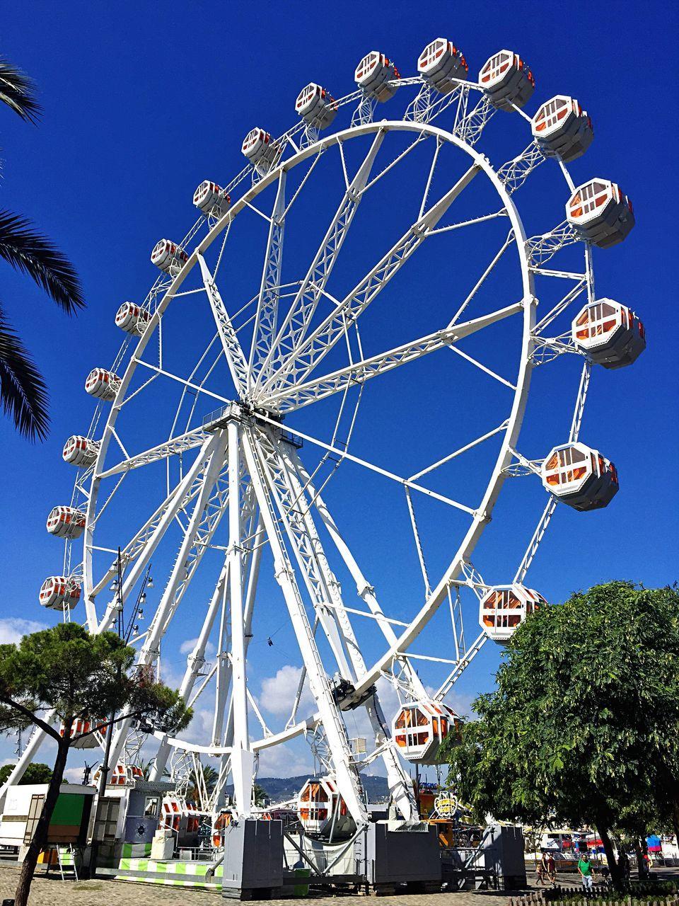 amusement park, arts culture and entertainment, ferris wheel, blue, amusement park ride, low angle view, clear sky, tree, leisure activity, day, outdoors, big wheel, sky, built structure, architecture, no people