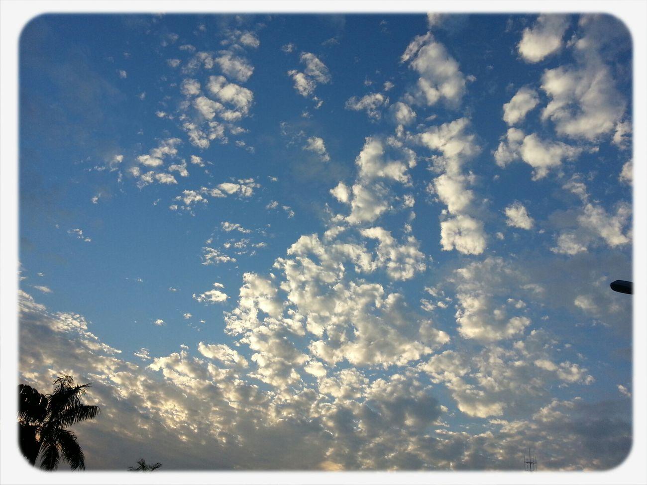 Sky '~
