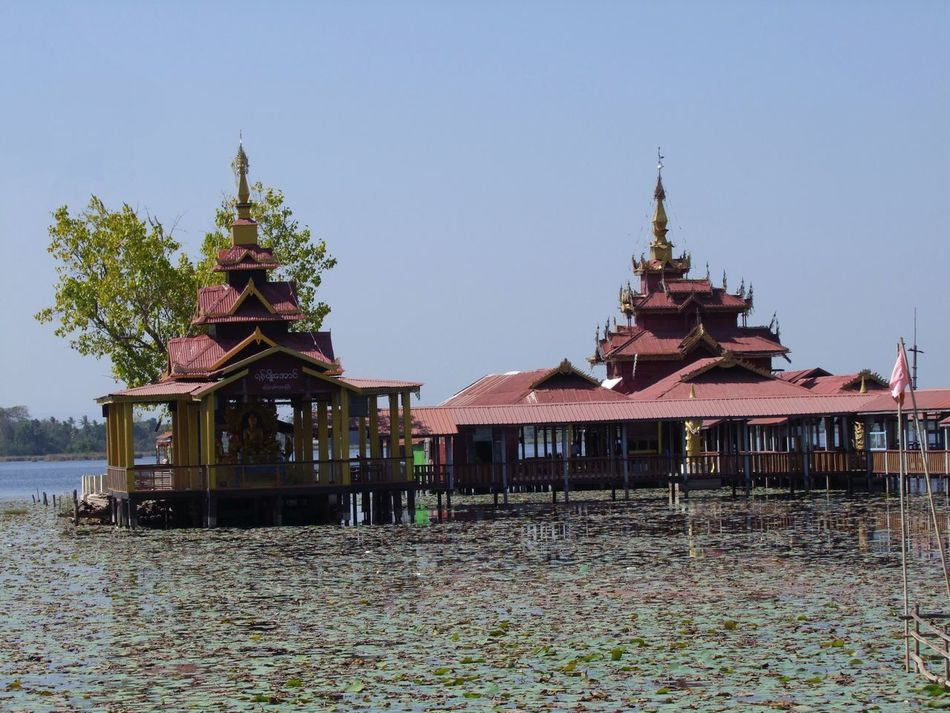 Buddhist Pagoda on Salay Water Lilly Lake Blue Sky Buddhist Architecture Buddhist Pagoda Buddhist Temple Building On Stilts Clear Sky Famous Place Lake Myanmar No People Ornate Roof Place Of Pilgrimage Place Of Prayer Place Of Worship Place Of Worship Red And Gold Coloured Reflections In The Water Religion Salay Sunlight And Shadows Tourism Travel Destination Tree Water Water Lillies