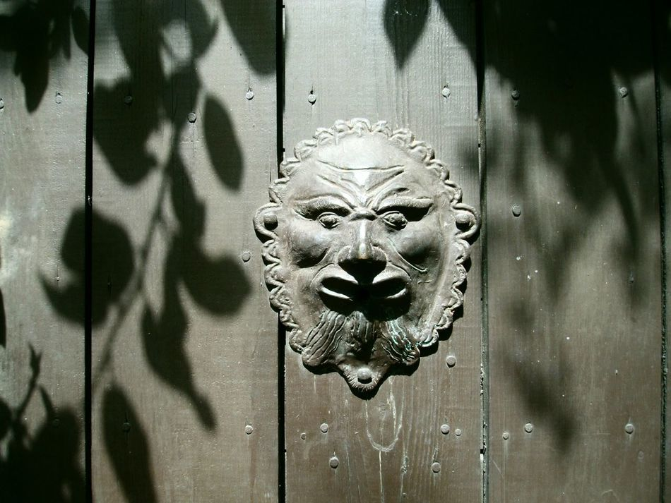 Wooden Gate Metal Face Playing With The Shadows