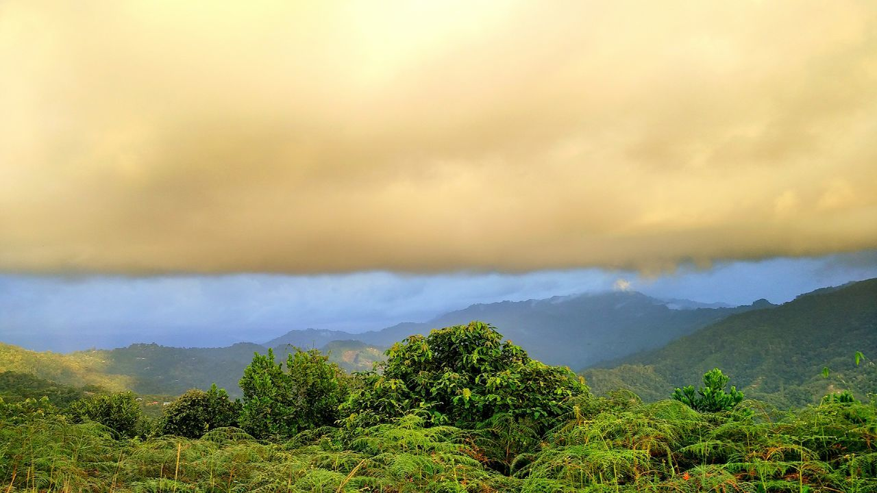 Getting Dark About To Rain Floating Cloud Scenics Weather HillTopView St. Veronica Hill Sabah Borneo Tamparuli Hometown Scenery