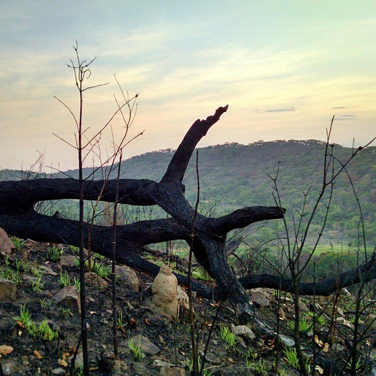 Be. Kazembeorphanage2014 Travel Explore Zambia Africa Nature Outdoors Sunset