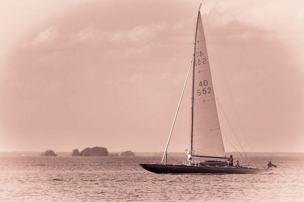 Monochrome Black And White Sailing B&w