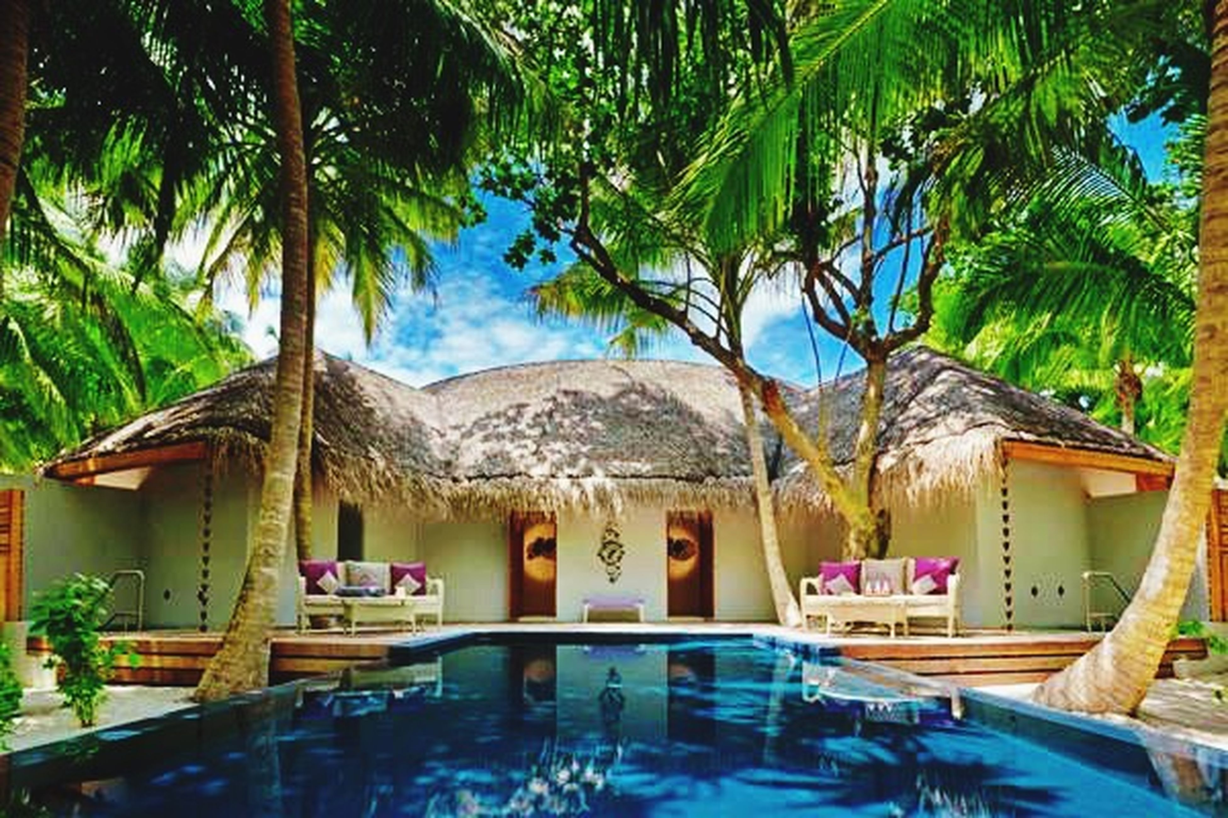 architecture, built structure, tree, building exterior, palm tree, house, sky, residential structure, water, residential building, roof, blue, tourist resort, day, swimming pool, nature, growth, outdoors, no people, sunlight