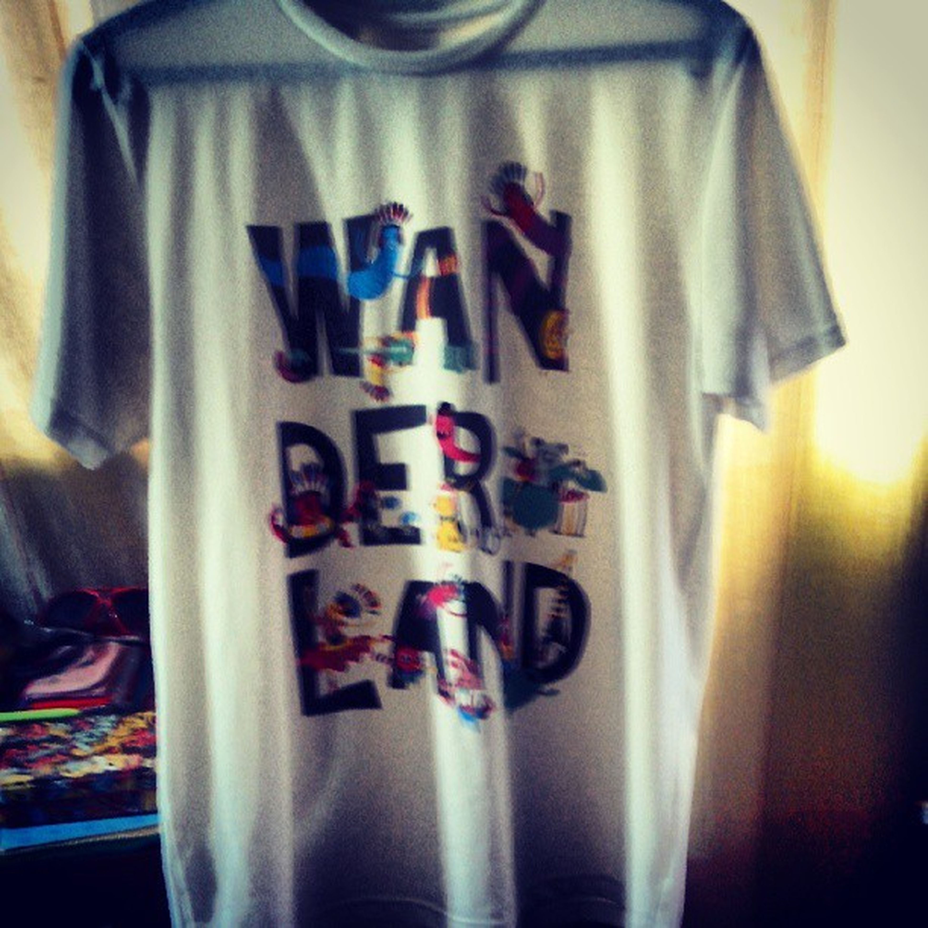 Wanderlandmusicfest shirt :) Wanderland2013