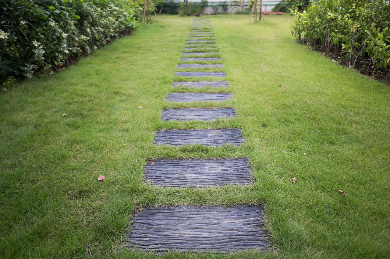 Walkway Amidst Grass In Field